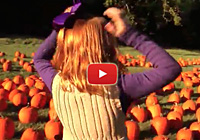 Pumpkin Volvo Video